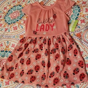 NWT peanut & ollie Toddler Dress Ladybugs/Daisies